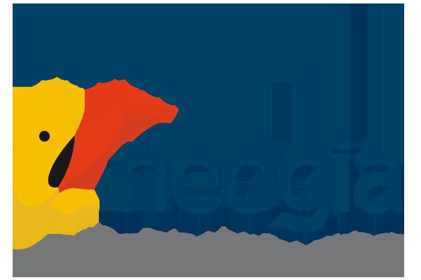 instaladores oficiales gas natural